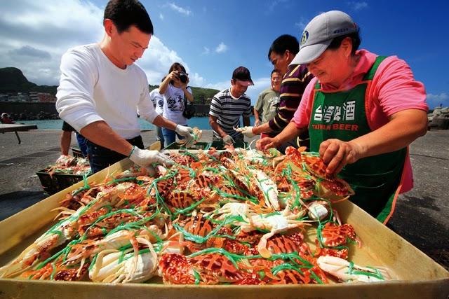 [品牌新生] 萬里蟹重塑台灣海鮮文化