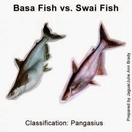 Basa Fish vs Swai Fish Pictures
