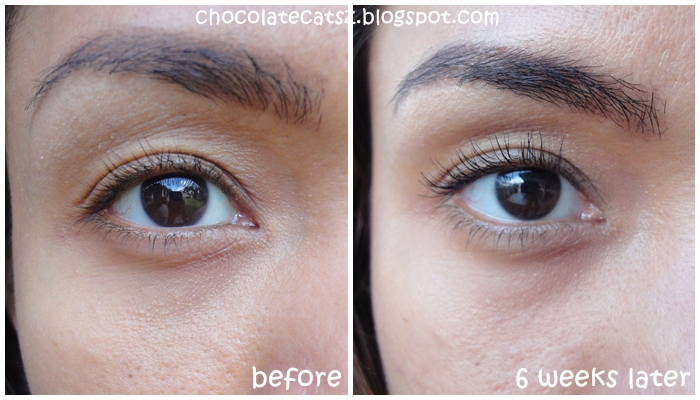 Chocolate Cats Review Clinique Even Better Eyes Dark