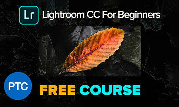 Free Lightroom CC for Beginners Course on YouTube