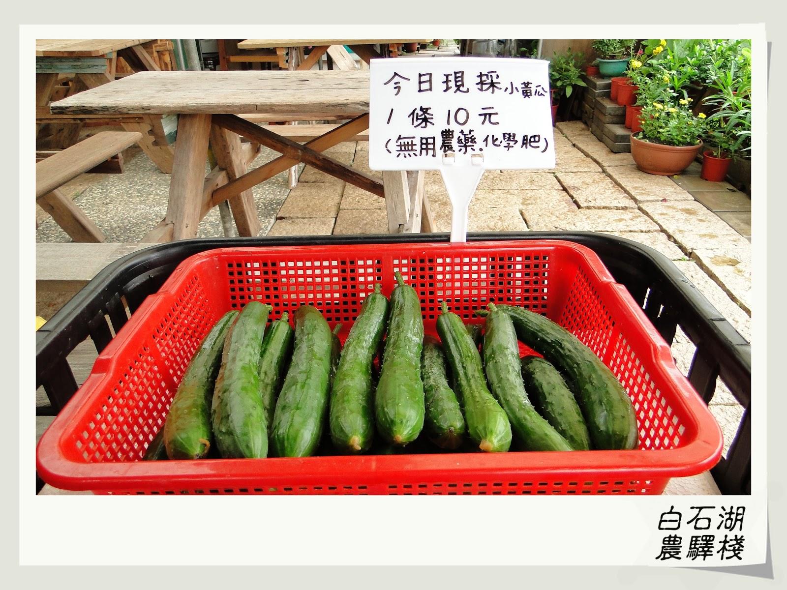臺北市: 小黃瓜