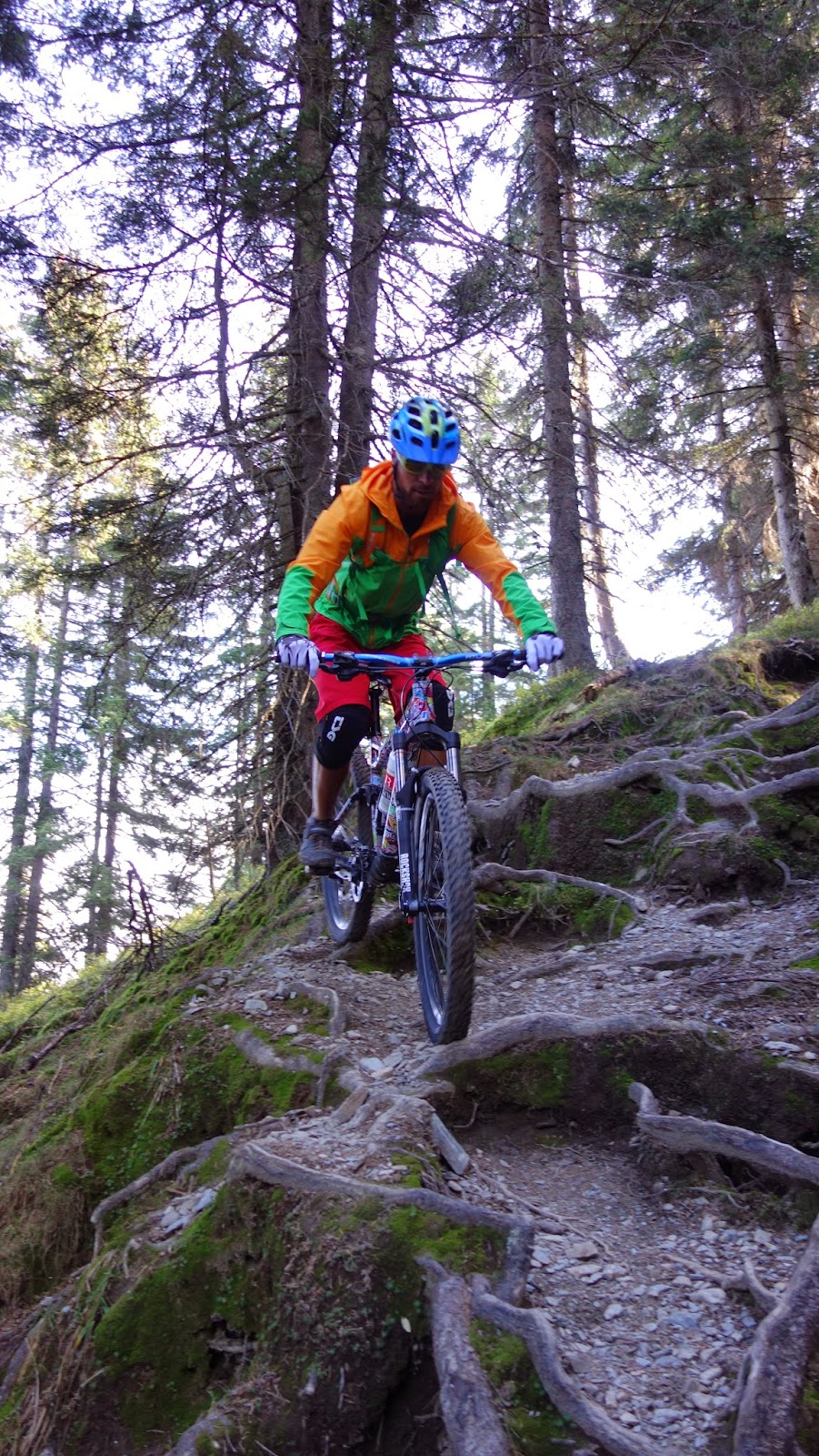 Mountainbike Guide Wilschönau mtb