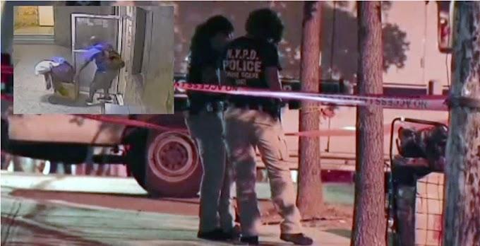 El NYPD aclara cabeza que cargaba narcotraficante en carrito de compras era de una mujer