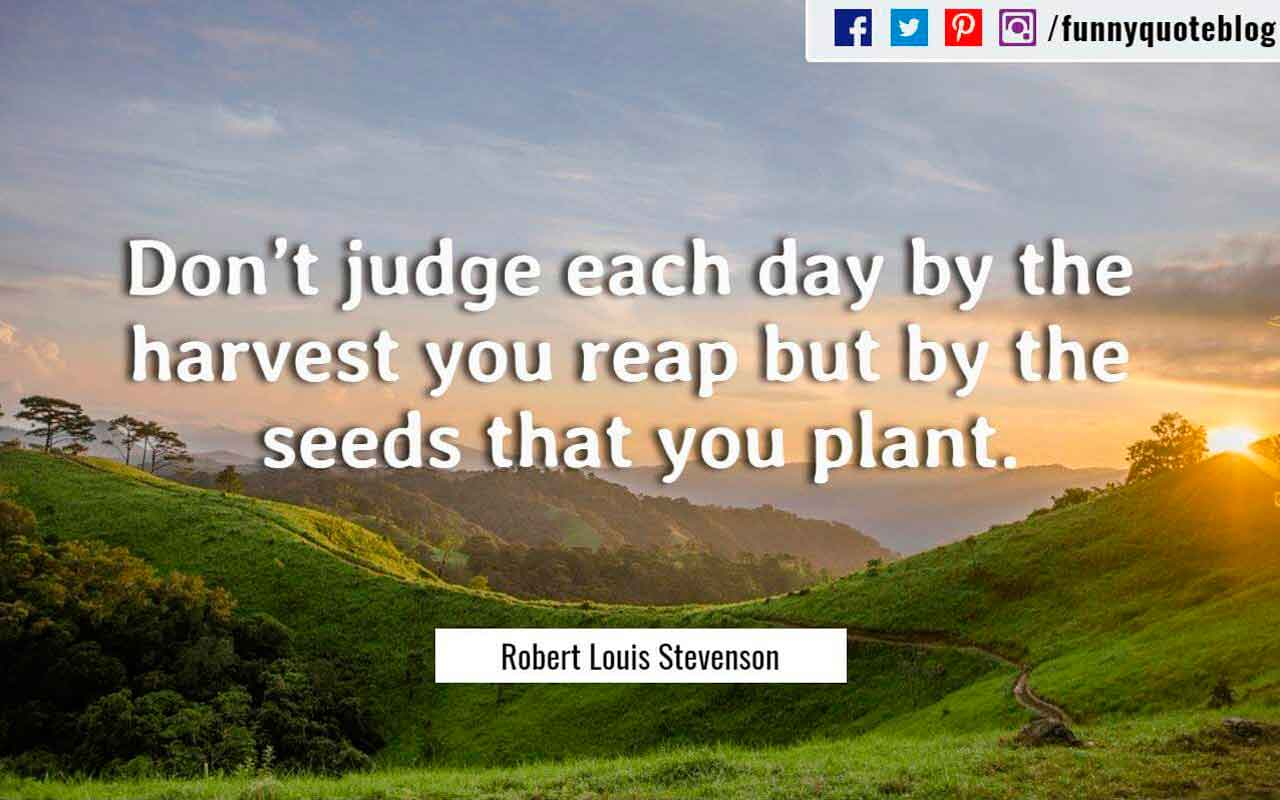 Don't judge each day by the harvest you reap but by the seeds that you plant. ― Robert Louis Stevenson Quote