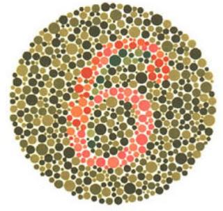 test buta warna 5 plate