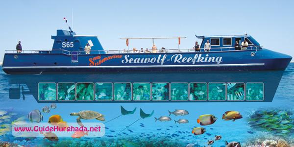 رحلة الغواصة سى ولف الغردقة , اسمتع برحلة الغواصة مع الشعب المرجانيه