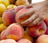 Testing fruit by hand