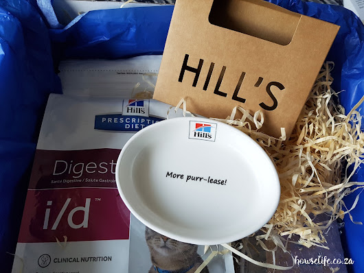 Howse Life: More Purr-lease - Your Free Hill's Kitty Bowl!