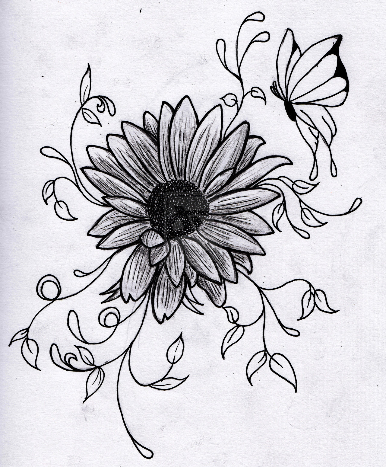 Flower Drawing ~ 3D Drawing