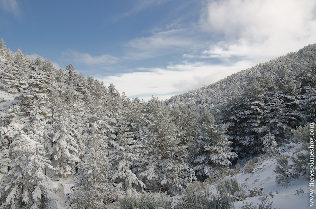 Ruta Cotos Valdesqui Arroyo Cerradillas Madrid nieve senderismo