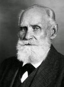 Ivan Petrovich Pavlov tokoh fisiologi pencernaan