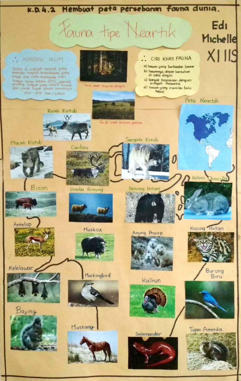 Fcs Fuat Cepat Selamat 11 Kd 4 2 Membuat Peta Persebaran Flora Dan Fauna Di Indonesia Dan Dunia Yang Dilengkapi Dengan