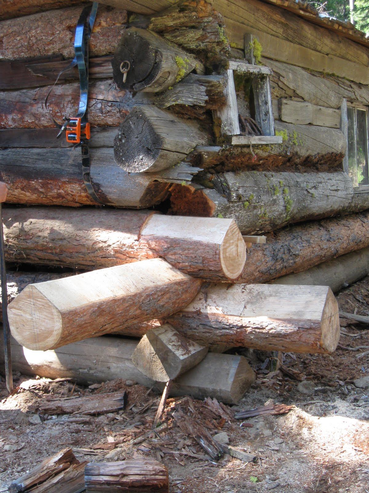 Log Down