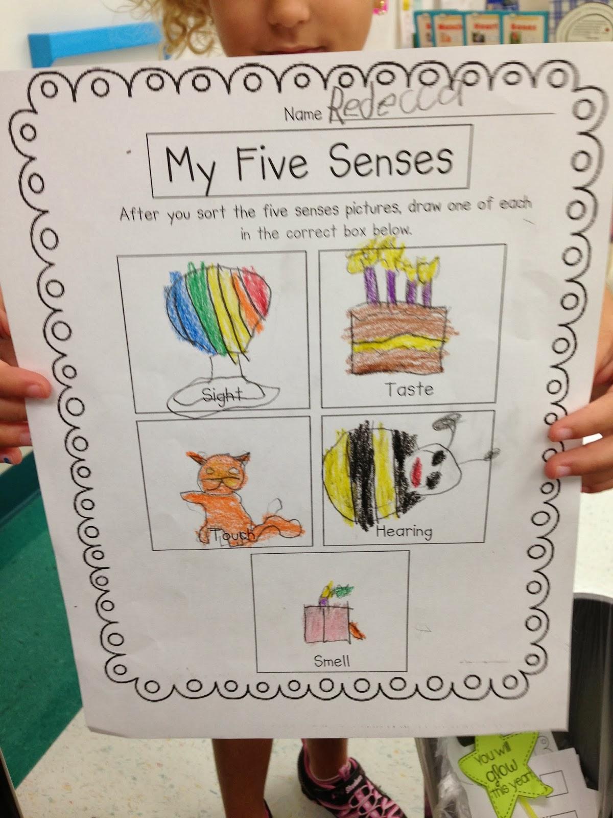 photo 4 - Five Senses Kindergarten