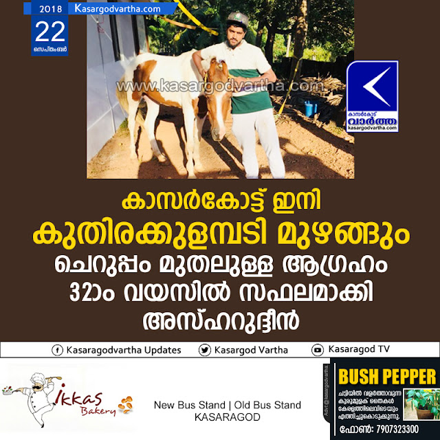 Horse, Kasaragod, News, Thalangara, Vidya Nagar, Asharudeen, Kasargod native bought horse