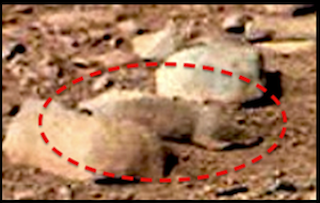 Squirrel Discovered In Curiosity Rover Photo, Mars, Dec 2012.