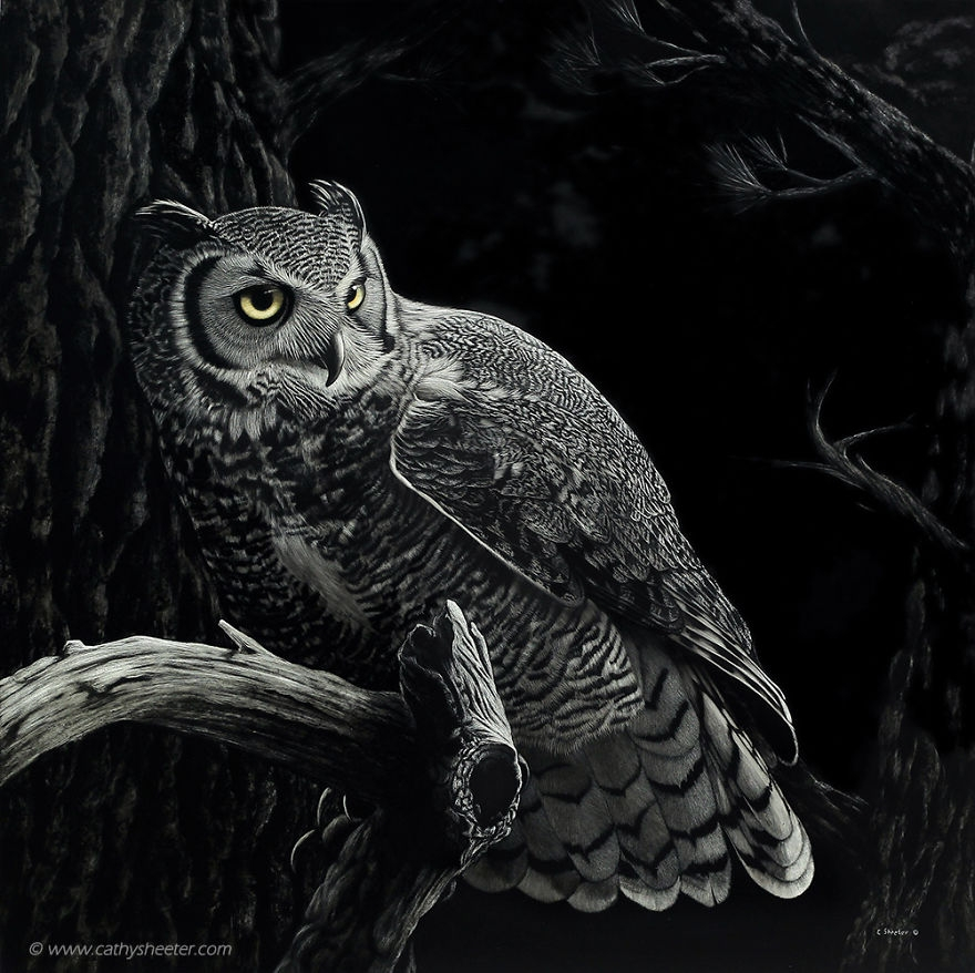 01-Owl-Night-Patrol-Cathy-Sheeter-Hyper-Realistic-Scratchboard-Wild-Animal-Drawings-www-designstack-co