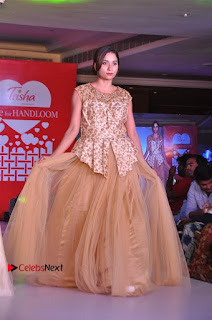 South Indian Celebrities Pos at Love For Handloom Collection Fashion Show  0037.jpg