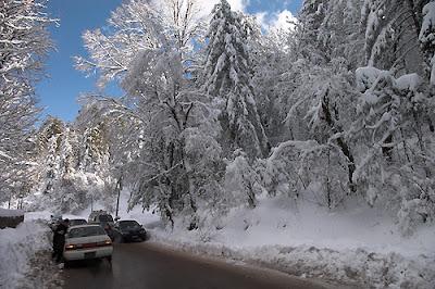 Beautiful Snowfall Real Snowfall Hard Disk Desktop Wallpapers