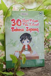 Buku 30 Hari Paham Pola Kalimat Bahasa Jepang