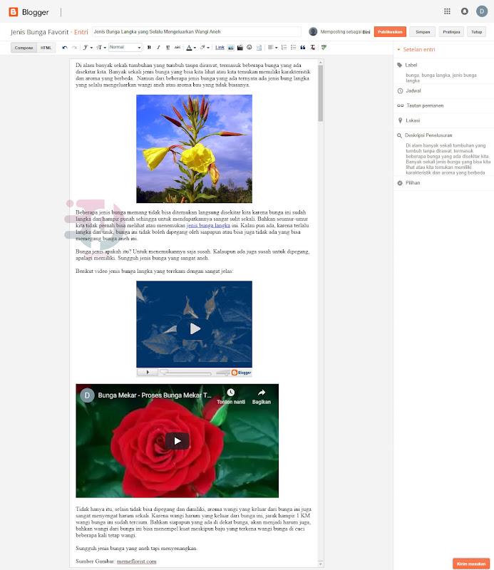 Cara Membuat Artikel Blog, Memasang Gambar dan Video