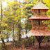 Una hermosa casa del árbol de estilo japonés para escapar de la rutina