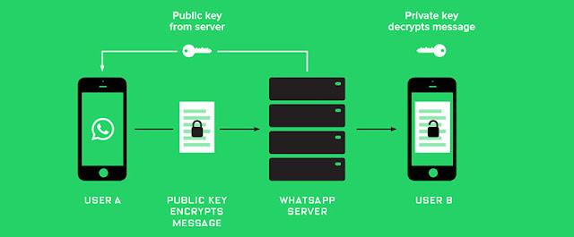 WhatsApp criptografia