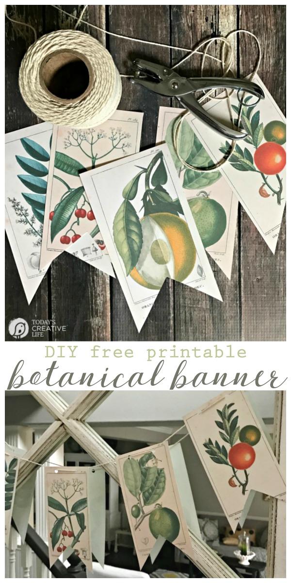 Free bontanical prints