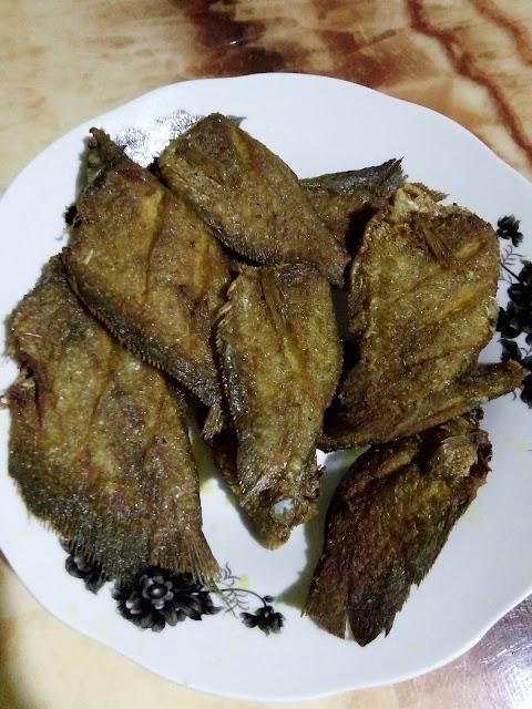 Ikan Sepat Rezeki Di Musim Tengkujuh