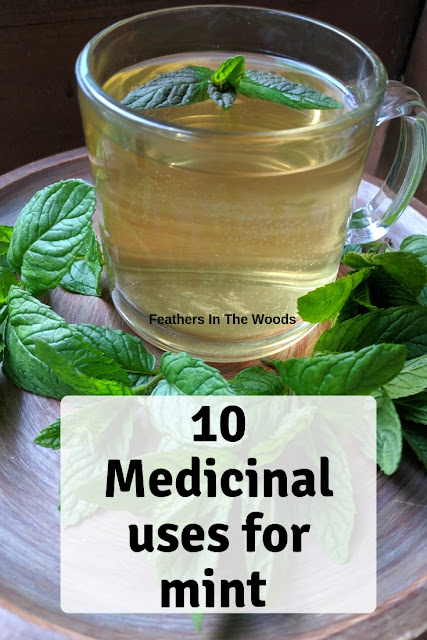10 medicinal uses for mint herb/tea