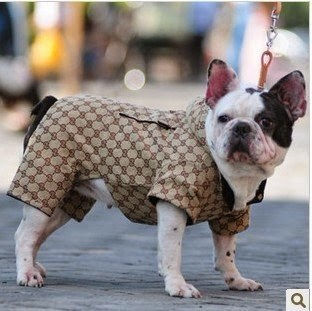 The designer dog coats for long winters