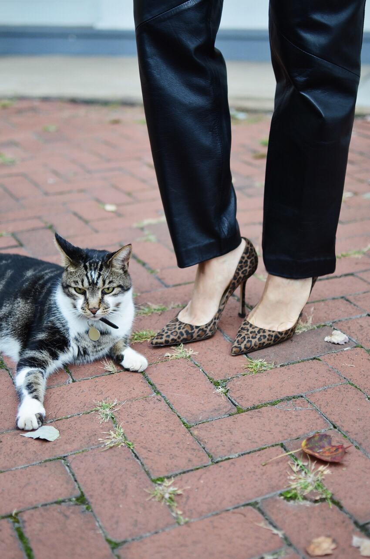 Leopard Pumps Street Style