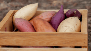 20 Benefits of Sweet Potatoes for Health You Need to Know