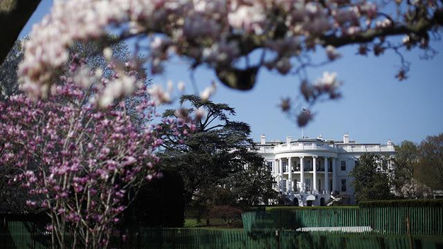 Melania Trump decide talar el árbol más viejo de la Casa Blanca