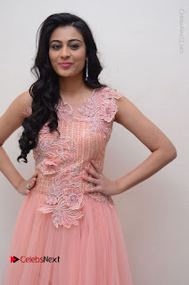Actress Neha Hinge Stills in Pink Long Dress at Srivalli Teaser Launch  0036.JPG