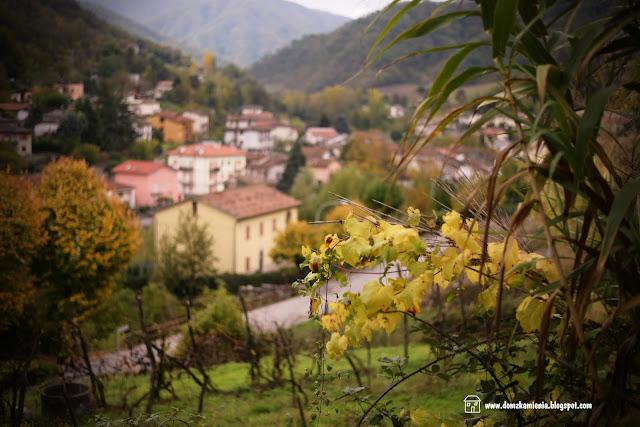 Dolina Lamone