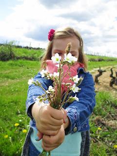 bouquet fleurs nature photographie