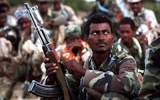 Military Force Eritrea