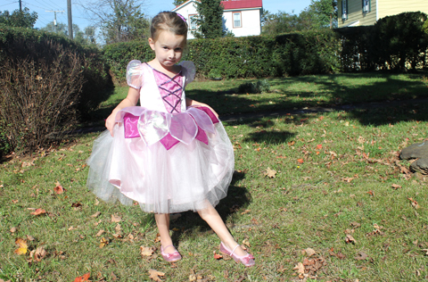 Louisa decided long ago she was going to be a fairy for Halloween so I got Simplicity 1792 (Disney Fairies) during a $3.99 sale. We decided on View C ...  sc 1 st  crozette & crozette: Rose Fairy Princess Costume (Simplicity 1792)