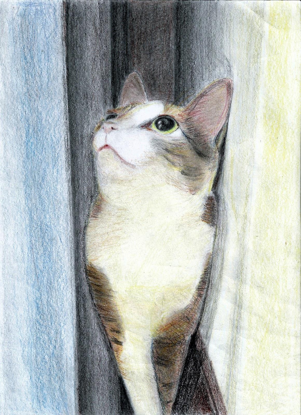 小朋友的色鉛筆畫   OJ跟貓的糾纏