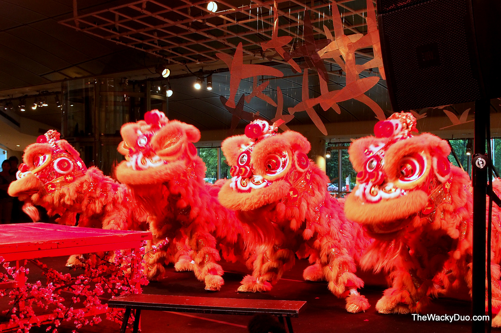Lion Dance Performances 舞狮 for Chinese New Year 2015 | The ...