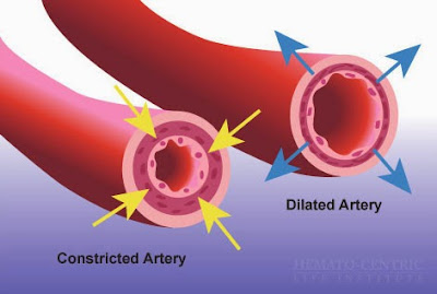 Forever Living Argi Plus contains L-arginine, which is essential for the production of nitric oxide. Benefits of Nitric oxide helps blood vessels relax