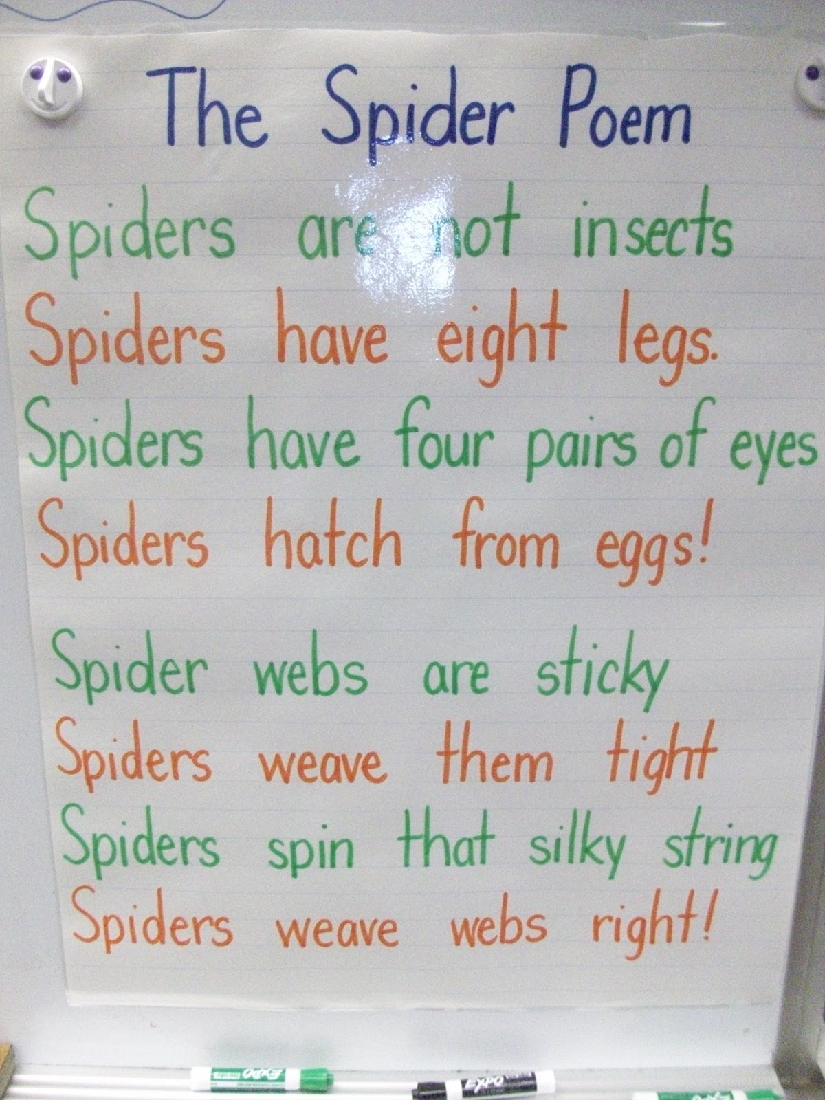 Mrs Hankinson S Class Spiders And Bats