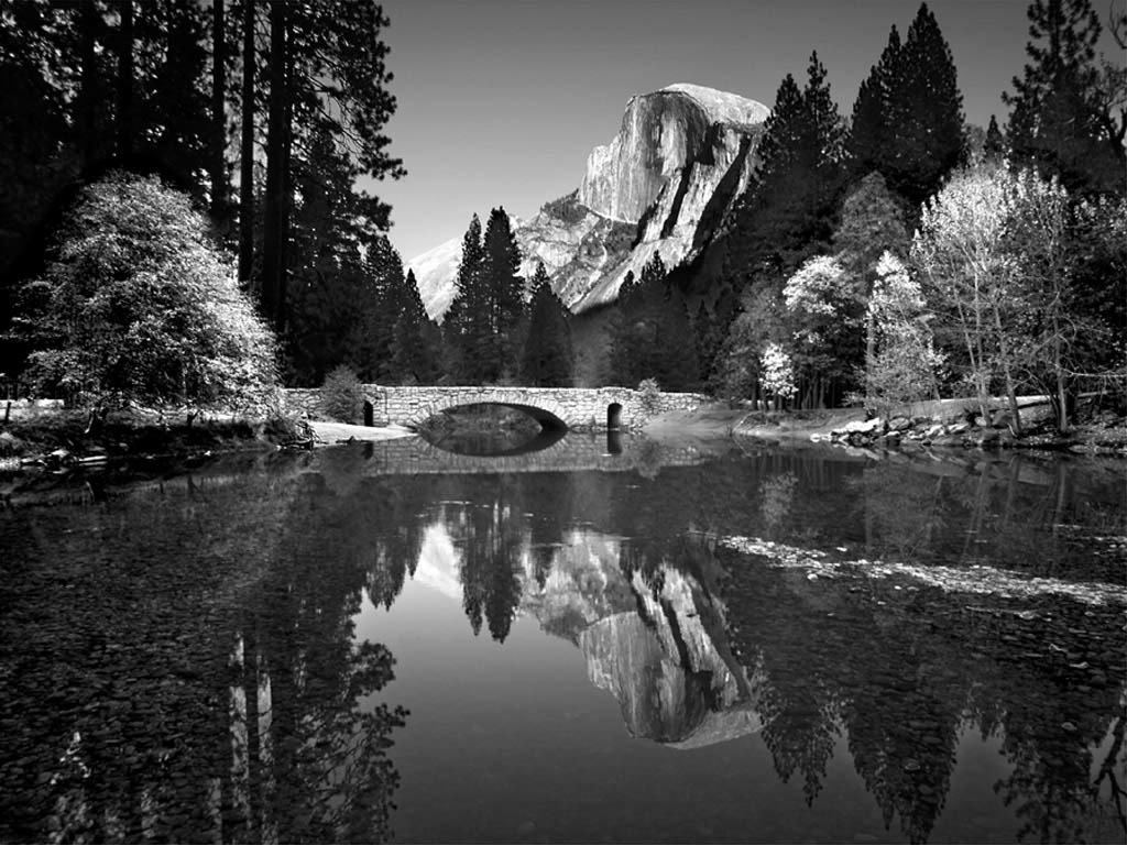 From A Certain Point of View: Ansel Adams
