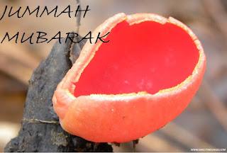 jumuah mubarak images