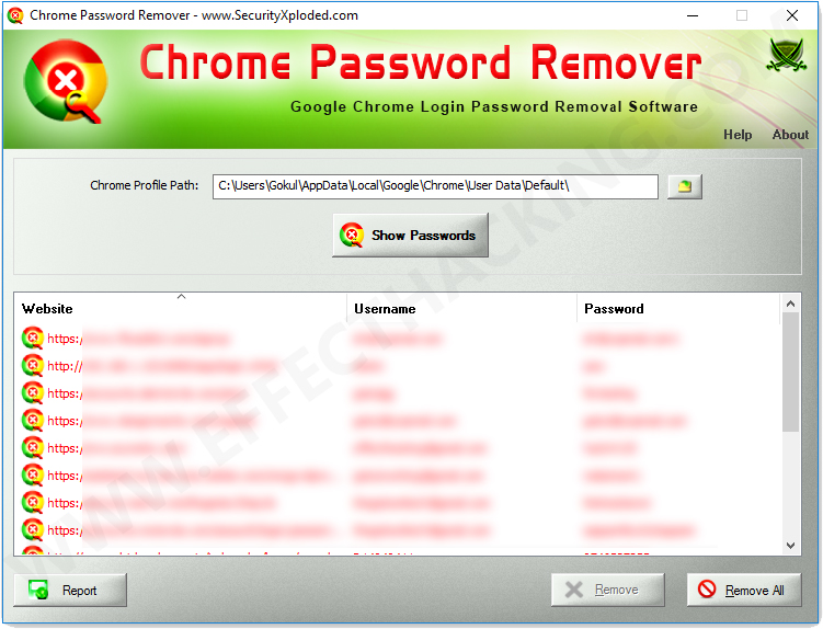 Chrome Password Remover Screenshot 2