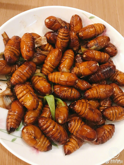 Lin Gengxin eats silkworm
