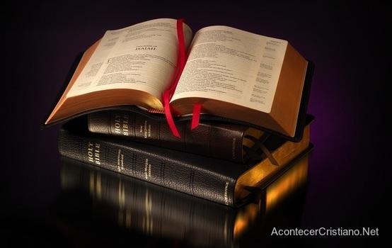 Cristianos Prefieren Traducciones De La Biblia Palabra Por Palabra De