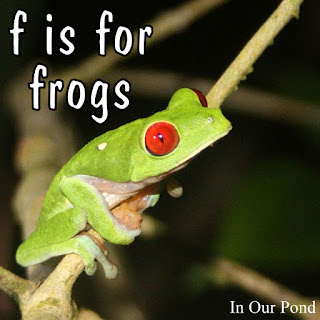 f is for frogs!  Homeschool Theme Unit  #montessori