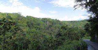 Jalan Lintas Sumatera